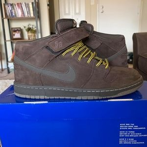 Men's Nike Dunk Shoes